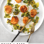 Seared Scallops with Preserved Lemon Dressing