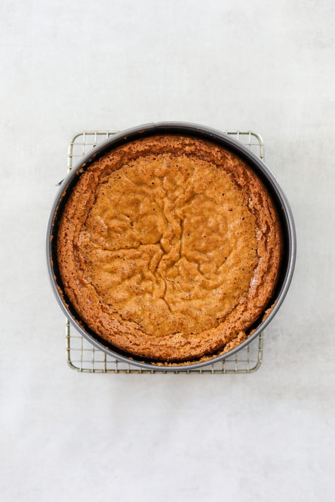 just baked Gluten-Free Olive Oil Cake in a spring form pan
