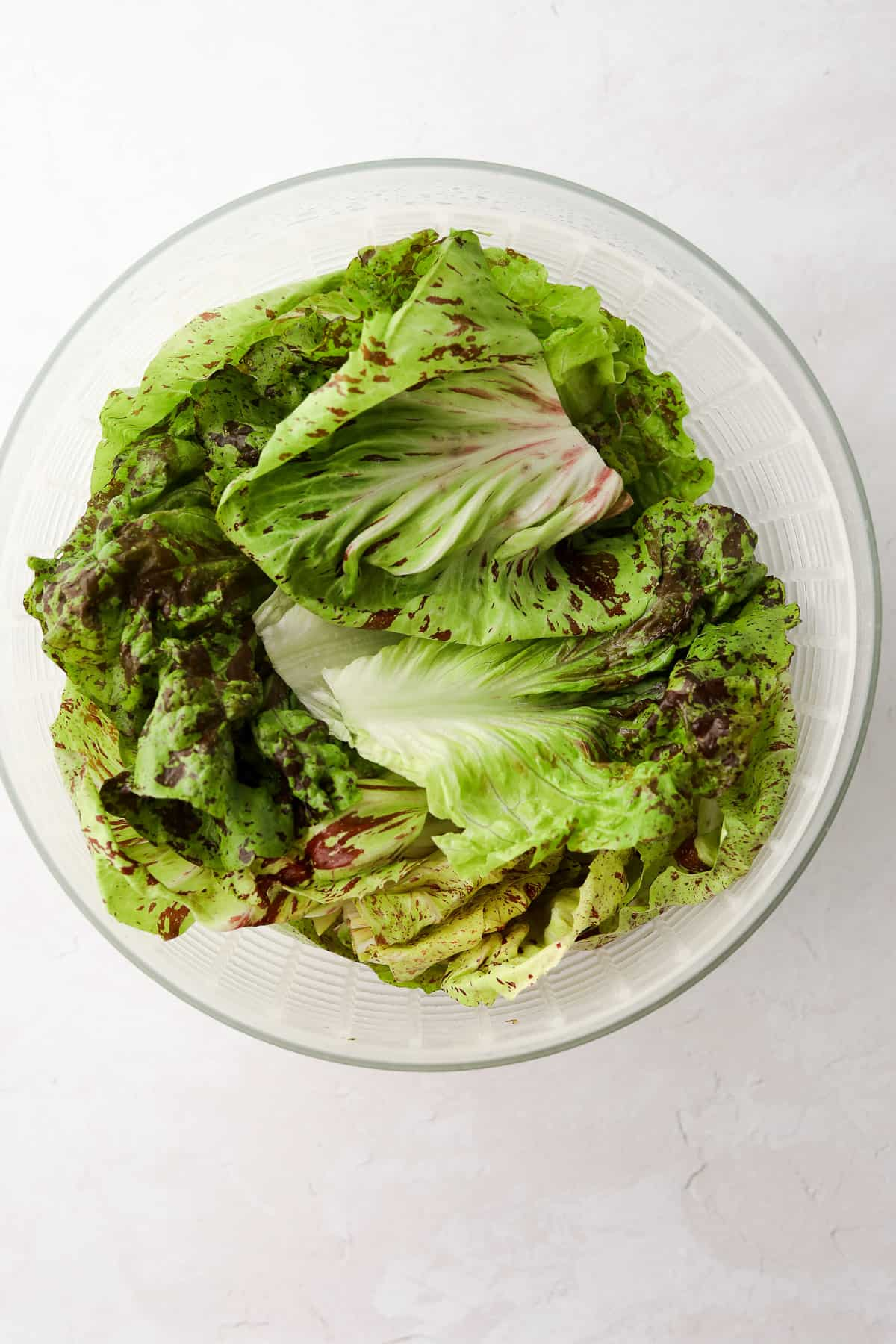 multi colored lettuce in a salad spinner on a white background
