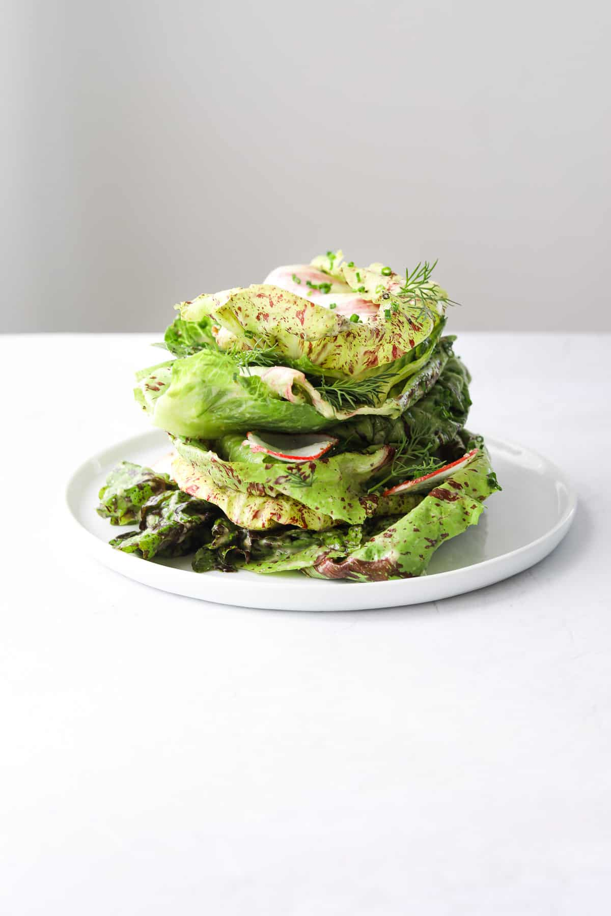 multi-colored lettuce, fresh herbs and shaved radish piled up on a small white plate