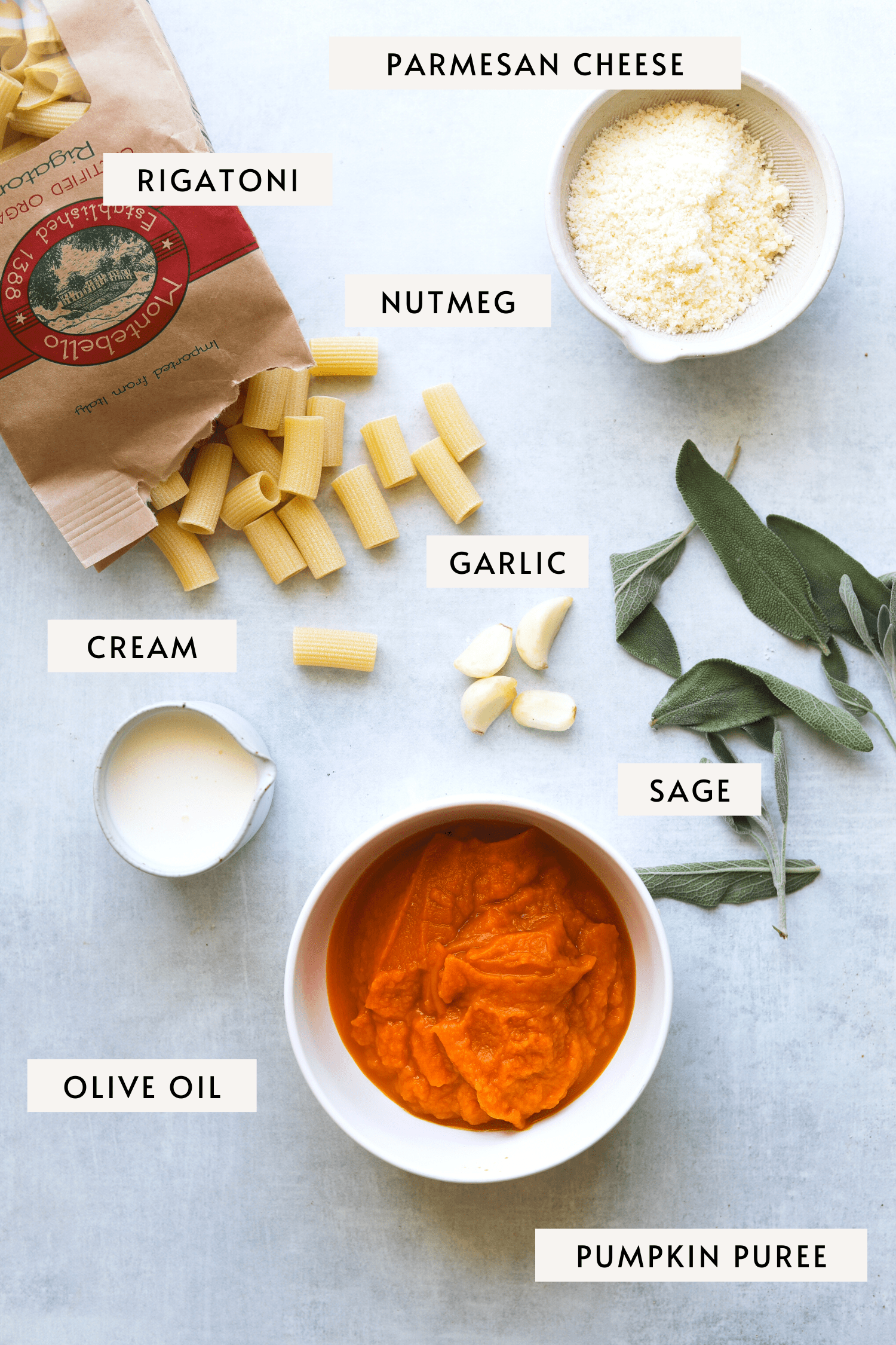 parmesan cheese, sage leaves, dried rigatoni pasta, garlic cloves, canned pumpkin puree