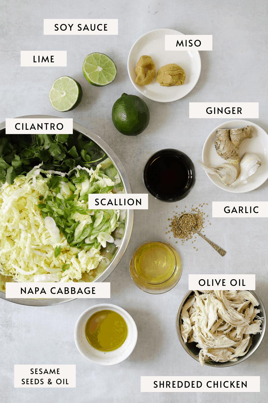 recipe ingredients in individual bowls on a blue background, shredded lettuce, olive oil, ginger, miso paste etc.