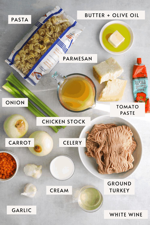 recipe ingredients on a blue background. ground turkey, tomato paste, wine, garlic, carrot, parmesan cheese