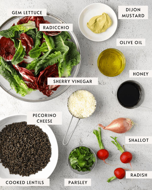salad ingredients individually portioned, dijon mustard, lettuce, lentils, pecorino cheese, olive oil, vinegar