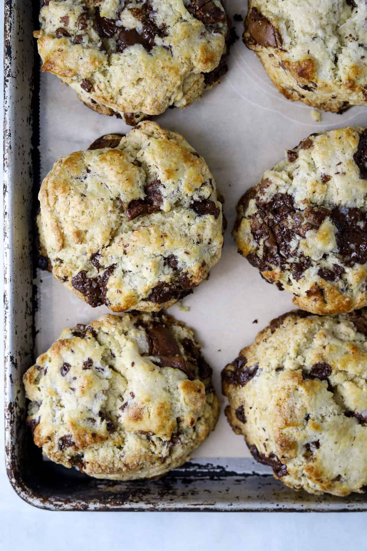 golden-brown baked chocolate scones with parchment paper