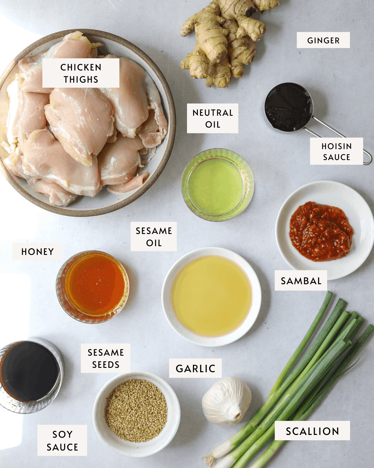 Recipe ingredients individually portioned and labeled, chicken thighs, soy sauce, garlic, ginger, scallions, honey etc.